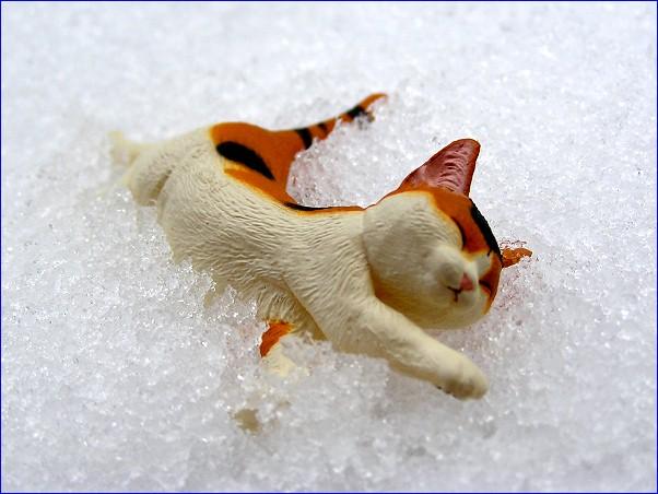 偽猫「行き倒れ」